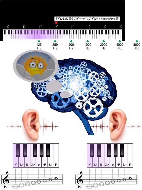 急性低音障害型感音難聴で聴力が低下する音の高さ