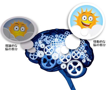 ストレスと大脳辺緑系の活性化